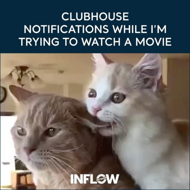 Is it just us or are these notifications getting a little out of hand? #INFLOWMemes #clubhouse